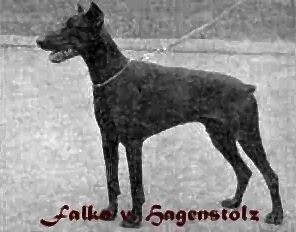 FalkoHagenstolz.jpg