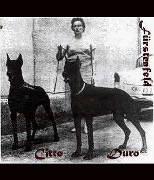 Duro_Citto.jpg