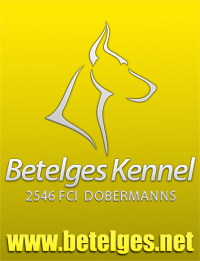 Betelges