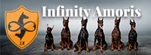 Infinity Amoris