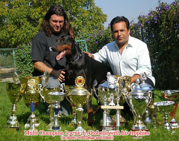 icarus_trophy.jpg