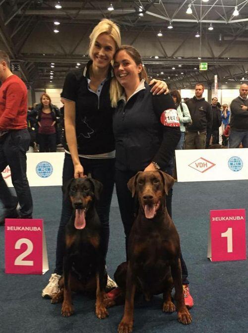 Dog Show Leipzig Winners